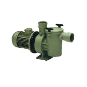 ARAL SP3000 pump for public pool