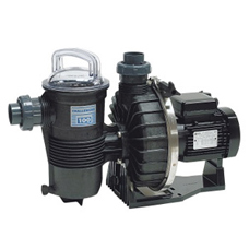 Pentair CHALLENGER filtration pump