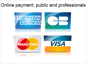 Online payment, public and professionals