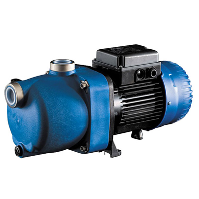 Polaris 1HP single-phase booster pump for pool cleaner