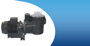 Pentair Eagle 2 HP three-phase pump